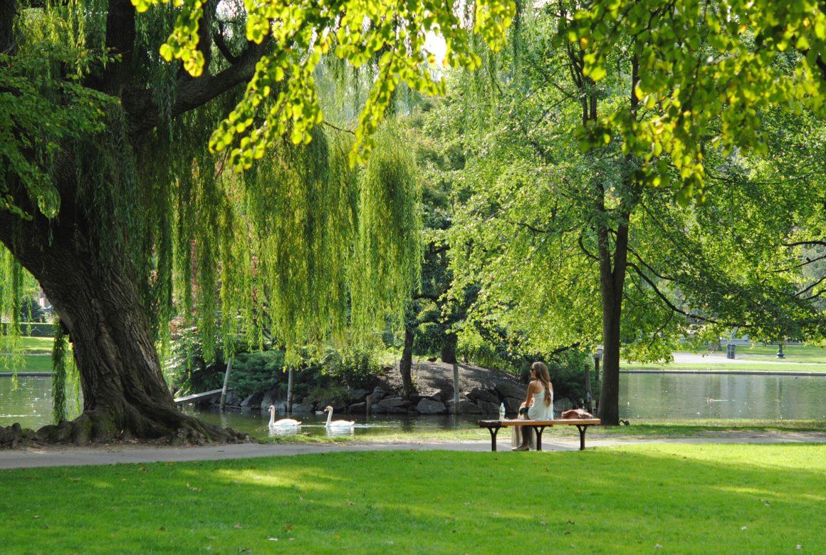 Lebensqualität in der Stadt, Raus aus der Stadt: mehr Grün, mehr Platz, mehr Lebensqualität